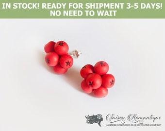Ready for shipment - Earrings Rowan Berries - Polymer Clay Flowers