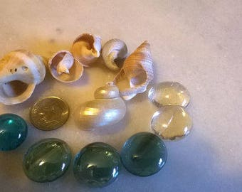 Blue Fairy Garden Glass Stepping stones and Seashells for Destash making Terrariums,kits.