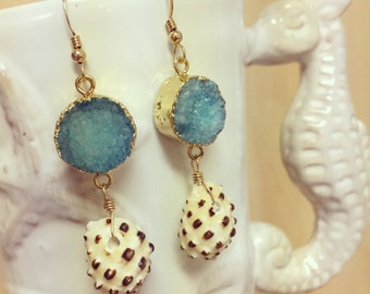 Druzy Earrings, Shell Earrings, Druzy Shell Earrings, Turquoise Shell Earrings, Drupe Shell Earrings