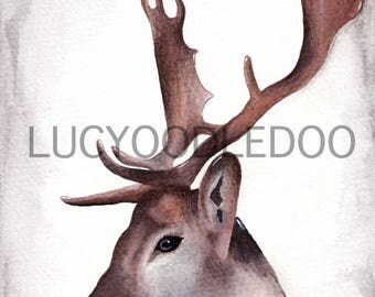 Limited Edition Stag Watercolour Painting Print