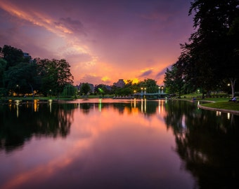 The lake at the Public Garden at sunset, in Boston, Massachusetts. | Photo Print, Stretched Canvas, or Metal Print.