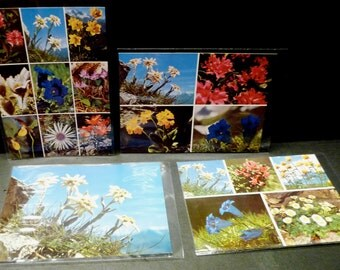 Final Clearance-4 Vintage Switzerland Postcards - Flowers of the Alps