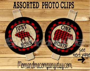 Lumberjack birthday photo banner clips newborn to 12 months first birthday month banner first year banner Lumber jack birthday RIBBON INCLD