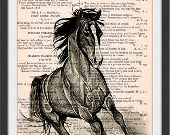 Black Horse Cuddly Critter Altered Art - Vintage Dictionary Book Page Art Print Beautiful Upcycled Book Art Mixed Horse Print