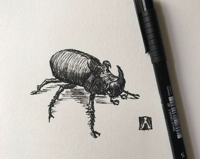 KillerBeeMoto: Original Pen Sketch of Rhino Beetle