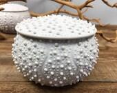Ceramic Lidded Jar, Porcelain Urchin Jar, White Pottery Sugar Keeper, Sea Urchin Jar with Lid, Minimalist White Jar, Unglazed Porcelain Jar