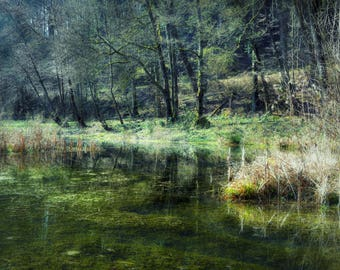 Green Lake, Fine art photography of a green shimmering lake in late autumn