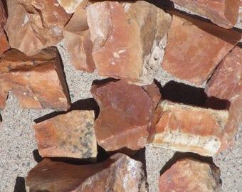 UTAH PETRIFIED Wood RARE, 1/2 lb. Green River, Flaming Gorge, Natural Rough Raw Stones Lapidary/Tumbling Jewelry Making