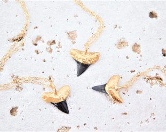 Gold Shark Tooth Necklace, Black Shark Tooth Necklace, Dainty Shark Tooth Necklace, Shark Tooth Charm Necklace, Gold Shark Tooth Choker