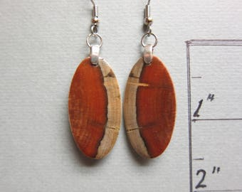 Stunning Norfolk Island Pine  Exotic Wood  Dangle Earrings ExoticWoodJewelryAnd handcrafted ecofriendly