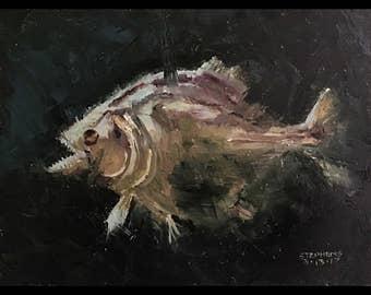 Piranha 6x8