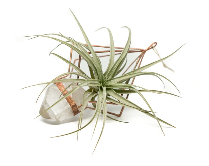 Copper Electroformed Quartz Crystal Air Plant Holder Sun Catcher