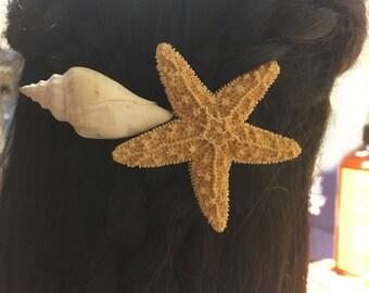 Natural Starfish Sea Shell Barrette