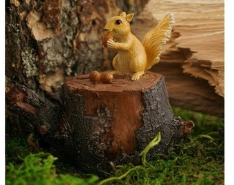 Squirrel On Tree Stump