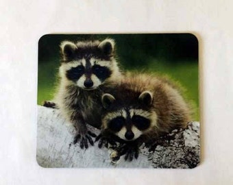 Racoons Mouse Pad