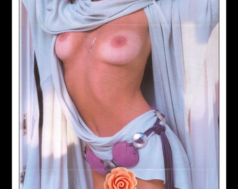 "Mature Playboy August 1986 : Playmate Centerfold Ava Fabian Gatefold 3 Page Spread Photo Wall Art Decor 11"" x 23"""