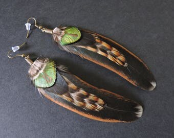 Boucles d'oreilles plumes de coq et de paon / Rooster and peacock feathers earrings / Green, black and brown earrings