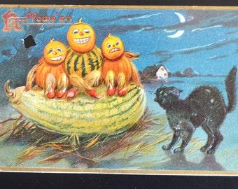Halloween Postcard Raphael Tuck Embossed Series 150 Black Cat Chasing JOL Squash Men