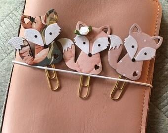 Blush Fox collection