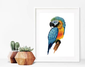 Parrot Wall Print,Macaw Watercolor,Parrot Decor Prints,Watercolor Deco,Blue,Red,Orange,Bird Watercolor Printables,Tropical Bird Prints