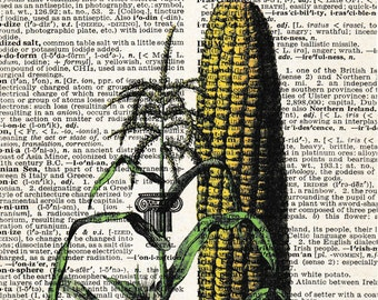 5x7 | Cornstalk | Farm | Corn | Farming picture | Cornfield | Farmer print | Picture | Gift | Re-purposed Dictionary | Gift For Friend