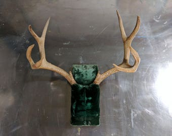 SOLD - Grimm TV Television Series Estate Warehouse Sale Prop - Antique Mounted Antlers