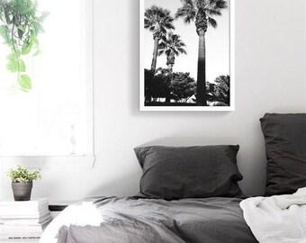 Paradise Las Palmas PRINTABLE Poster | Black and white Palm Tree Photography | Digital file | Modern Botanical Chic | California Art Print
