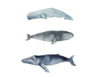 Whales Art Print Watercolor, Watercolor Humpback Whale, Sperm Whale, Bowhead Whale, Fine Art, Art decor, Animals, Watercolor Giclee