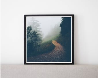 Into the Woods // Poster, Photography, Nature, Forest, Fog, Mountain, Path, Image, Picture, Square Format, Wall Decor, Home Decor, Mood,