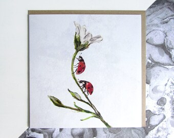 Two Ladybirds Card