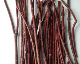 Red Dogwood Twigs,Branches,Floral,Arrangement,Wall Art,Rustic Decor,Fall,Wreath Material,Wedding Decor,Christmas,Holiday,Sticks