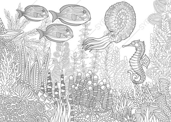 Ocean Coloring Pages For Adults Ocean Worldseahorse Nautilus Tropical Fishes3 Coloring