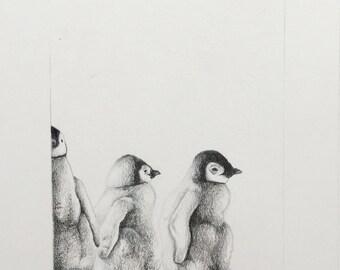 Baby Penguins Original pencil drawing framed affordable wall art animal decoration illustration black white funny home children's room art
