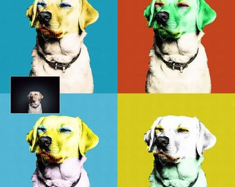 Pop Art Custom Painting, Andy Warhol style, Pet Portrait, Pet Custom Portrait, Custom Portrait, Painting From Photo, Color Painting