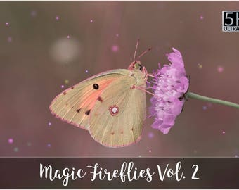 5K Magic Fireflies Vol. 2