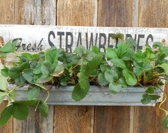 Strawberry Planter, STrawberry Gutter Garden, Garden Planter, Fresh Strawberry Sign
