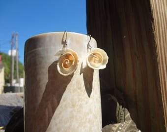 Open faced shell tip earrings