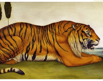 Tiger & Bird - Limited Edition Print - Watercolor painting