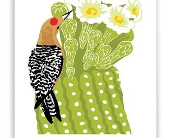 Gila Woodpecker in Saguaro Cactus Art Reproduction