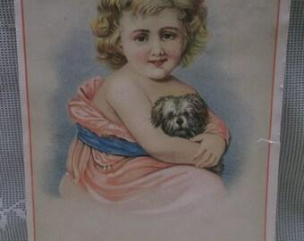 Pretty Girl w/ Puppy Dog - Risque Dress - Victorian Scrap Card