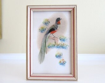 Vintage Mexican Feathercraft Art in Wood Frame