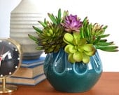Faux Succulents in Vintage Mid-Century Planter