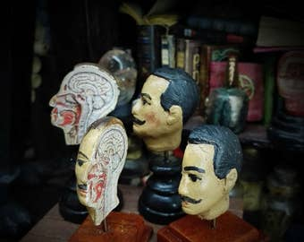 HUMAN HEAD Sagittal secction  . Antique anatomical model. Medical study miniature for dollhouses 1:12 scale