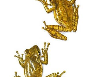 Signed Print - Two Four Lined Tree Frogs (PL0203)