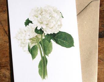 Hydrangea Botanical Watercolour Blank Card
