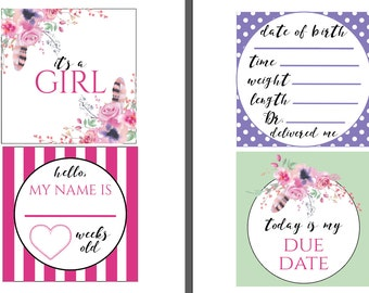 TWINS Preemie NICU Milestone Cards and a no touching sign