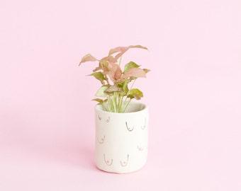 Sheila Boobies porcelain vessel - planter and tea cup