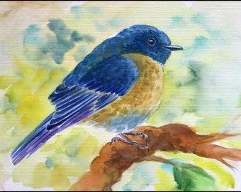 Original Watercolour Painting Budgerigars Budgies Birds Parakeet Nature Blumen