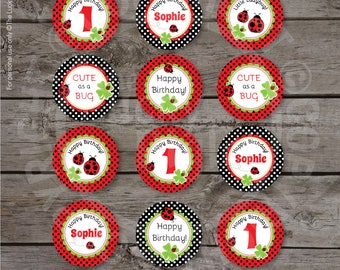LADYBUG PARTY CIRCLES,  Ladybug Cake Toppers, Ladybug Decoration, Ladybug Party Printables - Download Now, Edit Name in Adobe Reader