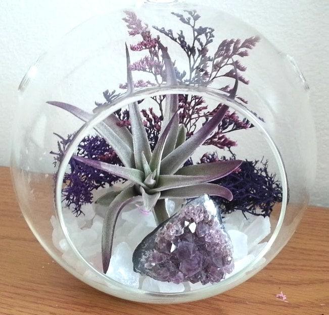 air plant terrarium kit crystal terrarium large hanging. Black Bedroom Furniture Sets. Home Design Ideas